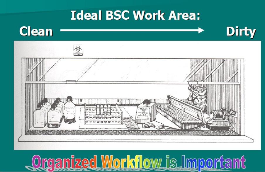 Biological Safety Training, Module 5 | Risk Management Services